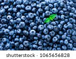 macro texture of blueberry... | Shutterstock . vector #1065656828