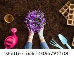 planting a plant with gardening ... | Shutterstock . vector #1065791108