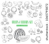 hand drawn fruits and berries... | Shutterstock .eps vector #1065795872