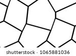 black and white irregular grid  ... | Shutterstock .eps vector #1065881036