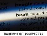 beak word in a dictionary. beak ... | Shutterstock . vector #1065957716