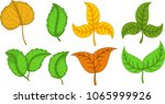 beauty various leaves cartoon | Shutterstock .eps vector #1065999926
