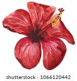 red hibiscus. tropical flower... | Shutterstock . vector #1066120442
