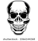 skull illustration. design... | Shutterstock .eps vector #1066144268