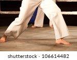 capoeira | Shutterstock . vector #106614482
