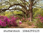 girl walking in the beautiful... | Shutterstock . vector #1066293125
