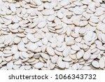 white raw pumpkin seeds as... | Shutterstock . vector #1066343732