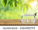 insurance concept  empty... | Shutterstock . vector #1066383755