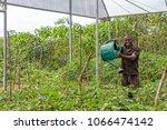 cabinda angola   09 jun 2010  ...   Shutterstock . vector #1066474142