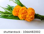 close up and top view  bouquet... | Shutterstock . vector #1066482002
