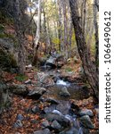 Mountain River In The Autumn...