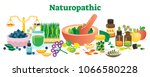 naturopathic health concept... | Shutterstock .eps vector #1066580228