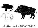 wild hog  boar game meat cut...   Shutterstock .eps vector #1066622462