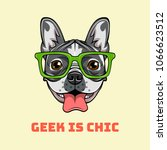 boxer nerd dog. geek is chic. ... | Shutterstock . vector #1066623512