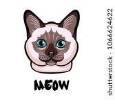 cute cat head pop art. isolated ...   Shutterstock . vector #1066624622