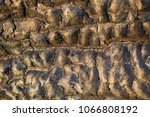 the texture of the burnt tree... | Shutterstock . vector #1066808192