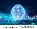 3d rendering of human  brain on ... | Shutterstock . vector #1066820666