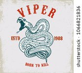viper snake illustration on...   Shutterstock .eps vector #1066821836