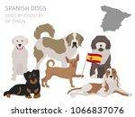 dogs by country of origin.... | Shutterstock .eps vector #1066837076