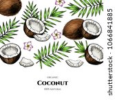 vector frame with coconuts and... | Shutterstock .eps vector #1066841885