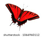 Small photo of Two-tailed swallowtail butterfly, Papilio multicaudata, isolated on white background. The largest of the US tiger sawllowtails, this one has even three tails on each wing. Color change to red