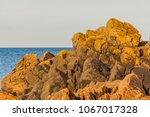 the rocky beach at molle  skane ... | Shutterstock . vector #1067017328