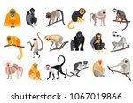 collection of different breeds... | Shutterstock .eps vector #1067019866