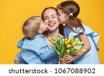 concept of mother's day. mom... | Shutterstock . vector #1067088902