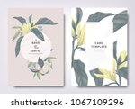 botanical wedding invitation... | Shutterstock .eps vector #1067109296