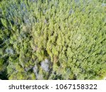 drone view on the deciduous... | Shutterstock . vector #1067158322