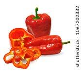 fresh  nutritious  tasty red... | Shutterstock .eps vector #1067202332