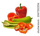 fresh  nutritious  tasty red... | Shutterstock .eps vector #1067202356