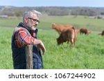 farmer standing in field with...   Shutterstock . vector #1067244902