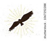 retro eagle silhouette logo.... | Shutterstock .eps vector #1067252288