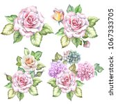 set of roses bouquets.watercolor | Shutterstock . vector #1067333705