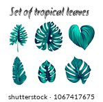 set of vector tropical palm... | Shutterstock .eps vector #1067417675