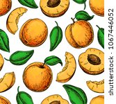 apricot seamless pattern.... | Shutterstock .eps vector #1067446052