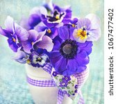 beautiful delicate violet... | Shutterstock . vector #1067477402