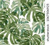 tropical leaves. seamless... | Shutterstock .eps vector #1067506925
