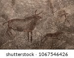 An image of ancient animals on the wall of the cave. ancient history, archeology.