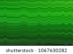 light green vector pattern with ... | Shutterstock .eps vector #1067630282