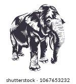 black elephant silhouette... | Shutterstock .eps vector #1067653232
