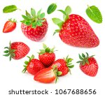 strawberry isolated on white... | Shutterstock . vector #1067688656