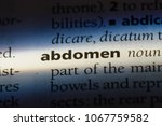 abdomen word in a dictionary.... | Shutterstock . vector #1067759582