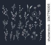 hand drawn romantic flowers.... | Shutterstock .eps vector #1067790305