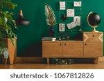 Dark green apartment interior...