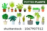 potted plants set vector.... | Shutterstock .eps vector #1067907512
