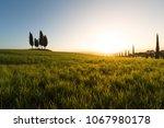 1st april 2018  pienza  tuscany ...   Shutterstock . vector #1067980178