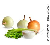 fresh  nutritious  tasty onion. ... | Shutterstock .eps vector #1067986478