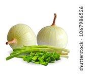 fresh  nutritious  tasty onion. ... | Shutterstock .eps vector #1067986526